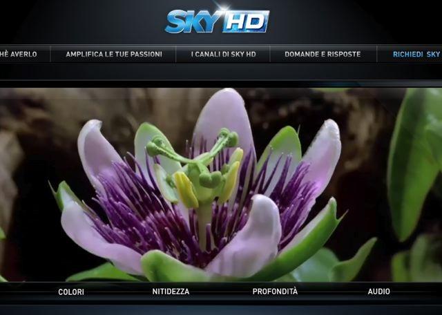 SKY IN HD: DA FEBBRAIO 13 CANALI NUOVI