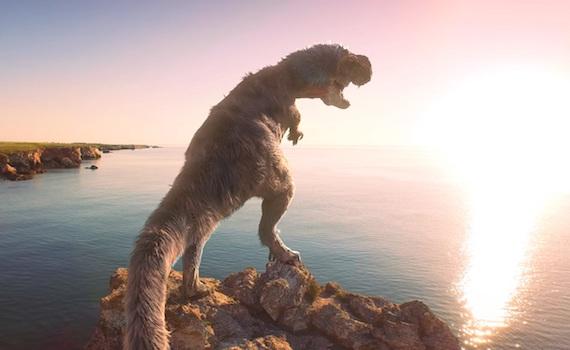Focus: un Jurassic Weekend con due doc inediti