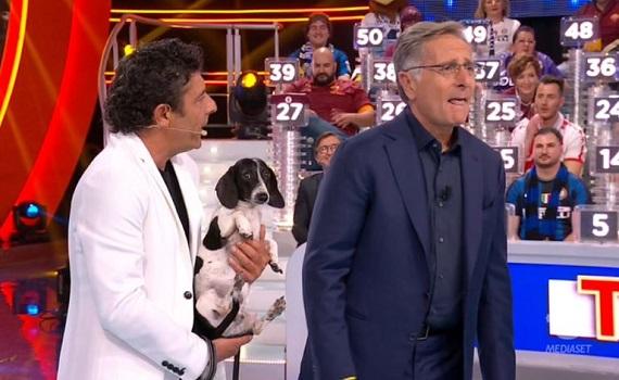 Ascolti Tv 2 maggio: Bonolis 'bianconero' a 4,7 milioni (20,5%), Mannoia a 3,1 mln (12,8%). Trolls precede i Topi. Boom di Rai4