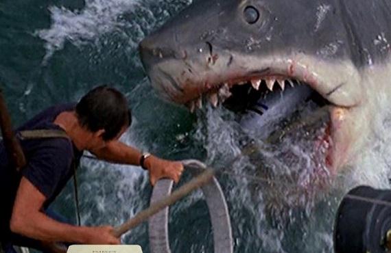Ascolti tv 24 maggio digital e pay: Lo squalo morde ancora. Il Giro accende anche RaiSport a pranzo